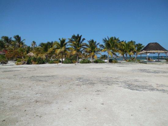 Turneffe Island afbeelding