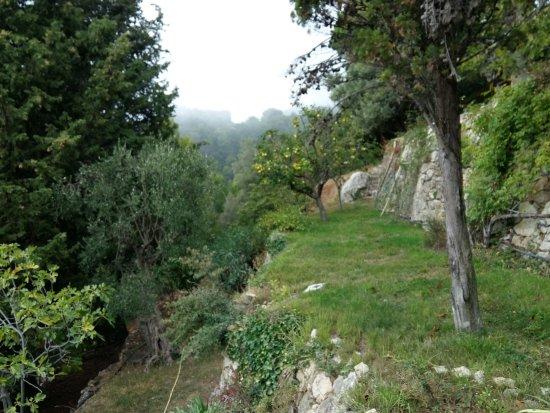 Domaine Pins Paul: Le jardin