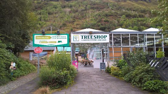 The Tree Shop Cafe: View from the car park - yep there is a post office