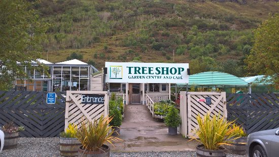 The Tree Shop Cafe: Garden centre entrance