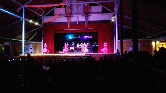 Tambor, Costa Rica: Excelentes shows.