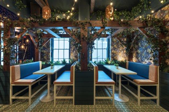 the oyster tavern ivy garden