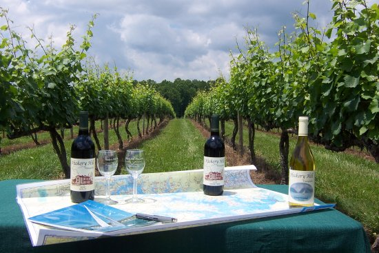 Hickory Hill Vineyards: Hickory Hill vineyard with SML map and wine