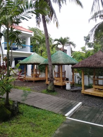 Palm springs resort and hotel updated 2017 reviews los for Bano beach resort