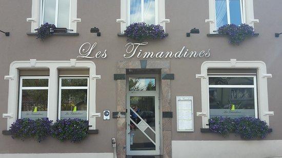 Les Timandines