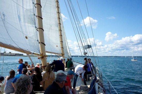 Sightsailing of Newport Image