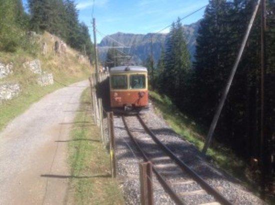 Chalet Fontana: The train to Murren from tram stop at Grutschalp.