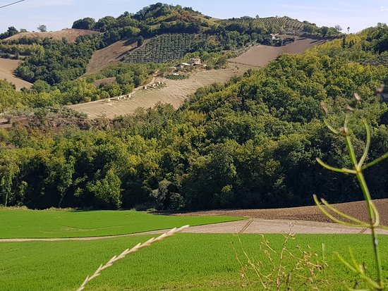 Montottone, Italy: Unico Senso situated on the rolling hills
