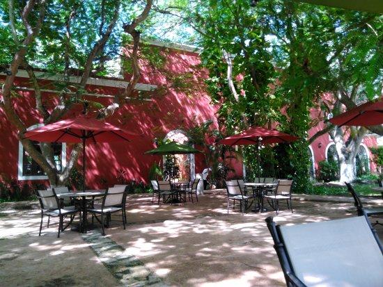 Hacienda Santa Cruz: IMG_20170919_145644_large.jpg