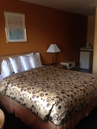 Travelodge San Luis Obispo: Clean and comfortable room