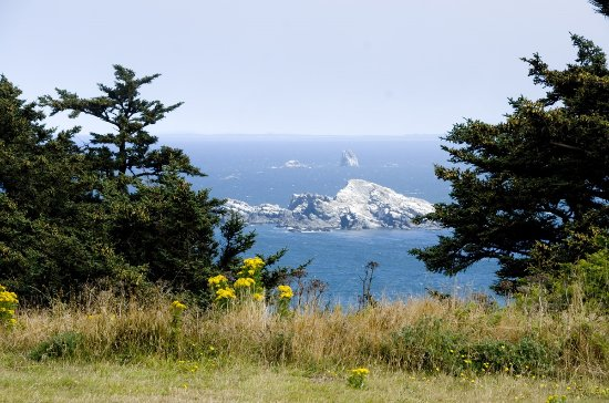 Cape Blanco Lighthouse: The glorious coastal view from the hilltop where the lighthouse stands.