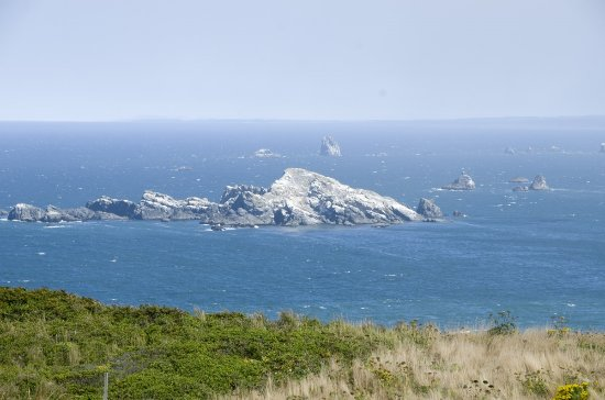 Port Orford, OR: The glorious coastal view from the hilltop where the lighthouse stands.
