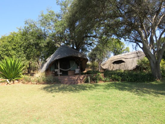 Imbabala Zambezi Safari Lodge: Comfortable cottages