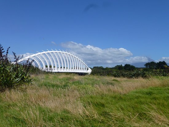 Taranaki Region, Nueva Zelanda: The bridge looks like the ribs of a whale