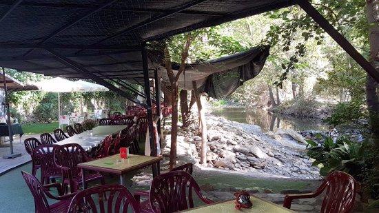 La Fabriquilla: TERRAZA JUNTO AL RIO