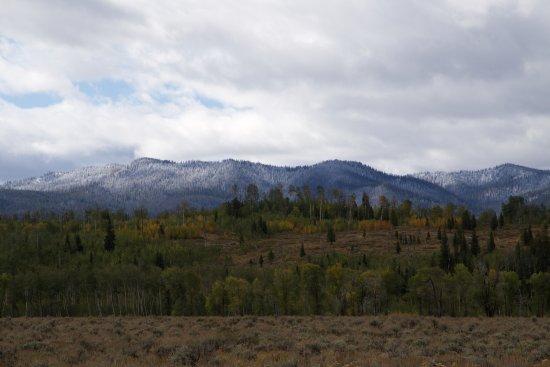 Jackson Hole, Ουαϊόμινγκ: Landscape 1