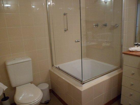 ميدينا سيرفيسد أبارتمينتس مارتن بلاس: the shower box