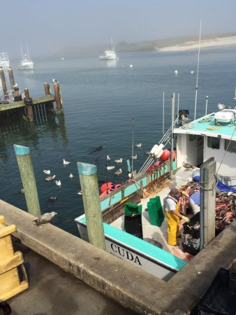 Chatham pier and fish market all you need to know before for Cape cod fish market