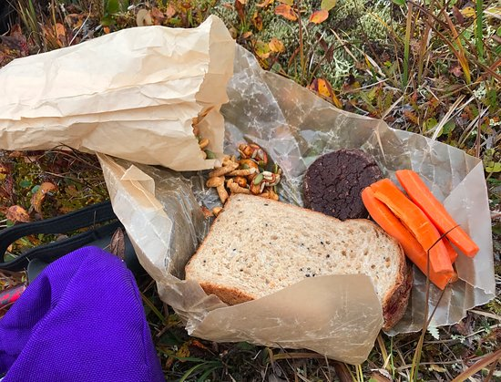 Camp Denali: 5 star hiking sack lunch