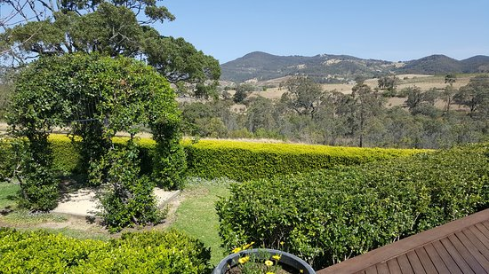 Pokolbin, Australia: One of the stunning views from Audrey Wilkinson Vineyard