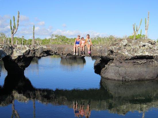 Puerto Villamil, Ecuador: Explora y Admira el Paraiso....Ven y disfruta con ROSEDELCO ISABELA