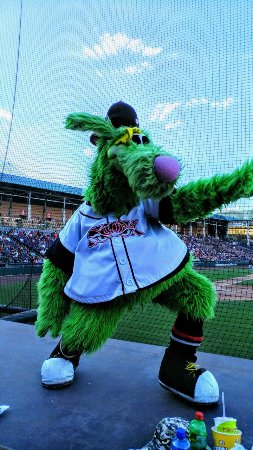 Lake Elsinore Storm, The Diamond: The mascot was hilarious