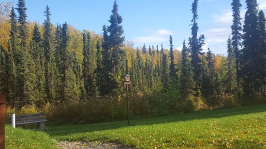 Soldotna, AK: Fall has come to our B & B. Come and stay, winter rates in place but breakfasts are still as del