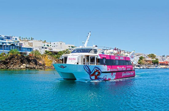 One-Way or Return Water Taxi: Puerto ...