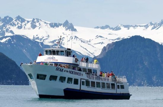 Seward Shore Excursion: Kenai Fjords ...
