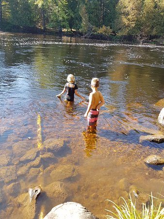 Killaloe, Canada: Swimming in the River