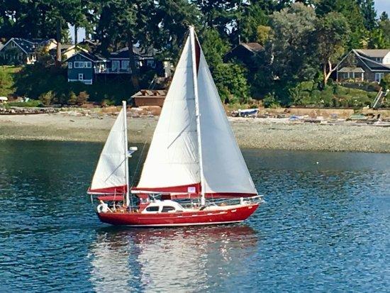 Bainbridge Island, WA: photo7.jpg