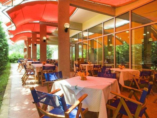 Ivana Palace Hotel: garden