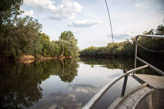 Mary River Wilderness Retreat & Caravan Park: Crocodile Safari