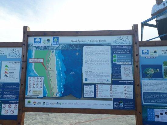 info de playa delfines