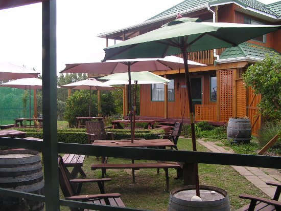 ‪‪Martinborough‬, نيوزيلندا: Tasting room courtyard next to vineyard home‬