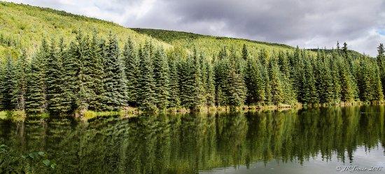 Chena Hot Springs, Alaska: Beaver Pond. Chena, Alaska.