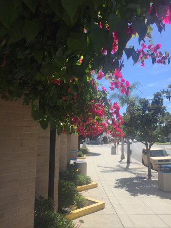 Coronado Island: photo3.jpg