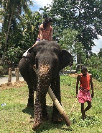 Journey Lanka