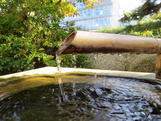 la fontaine picture of jardin japonais le havre tripadvisor. Black Bedroom Furniture Sets. Home Design Ideas