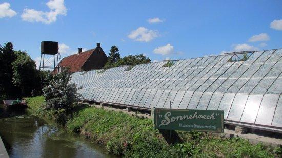 Kwintsheul, Niederlande: Woonhuis, watertoren en kassen