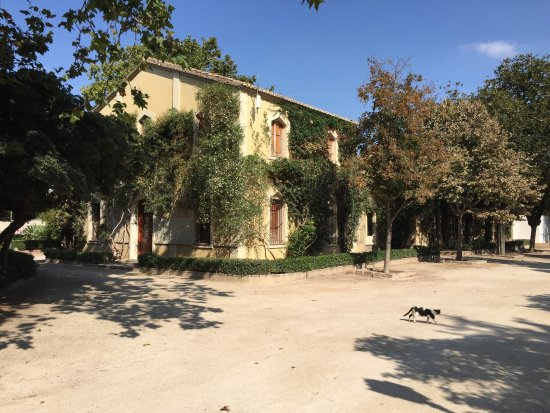 Foto de jardines del real valencia tripadvisor for Jardines del real valencia