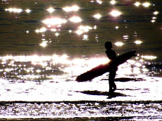 Contre jour photo de la plage du havre le havre for 3f haute normandie