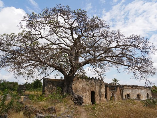 Kilwa Masoko, Tanzania: photo3.jpg