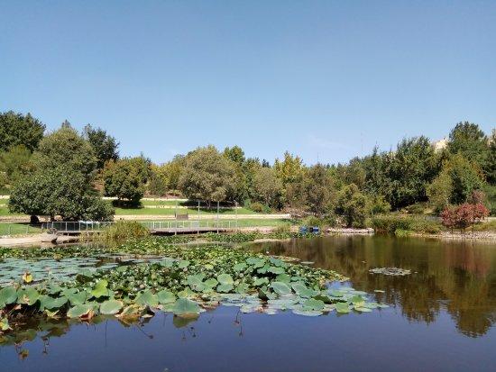 Jerusalem Botanical Gardens : TA_IMG_20170926_114302_large.jpg
