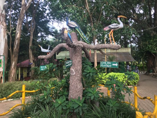 Ranganathittu Bird Sanctuary: inside the santuary