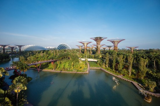 Conrad Centennial Singapore: Visit Gardens by the Bay which is a mere 15-mins walk or 1-train stop away from the hotel