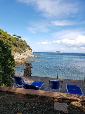 Villa La Pineta: photo2.jpg