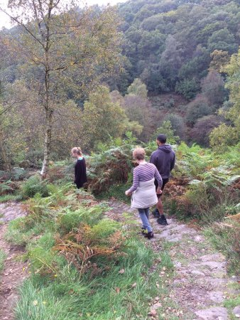 Dalby Forest: photo0.jpg