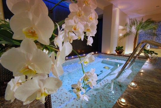 Rose Spa Kempinski Palace Portoroz Istria Slovenia Picture Of - Palace-hotel-in-slovenia