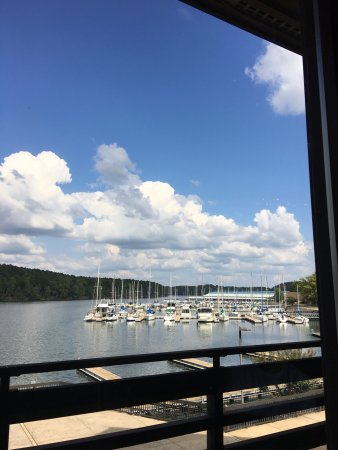 Rogersville, AL: Daniella's In The Park